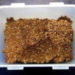 Wieder heile: Erste Cracker aus dem reparierten Sedona