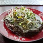 Leinsamencracker mit Veggiekäse und Sprossen